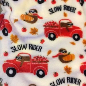 Sloth red truck blanket *firm price*